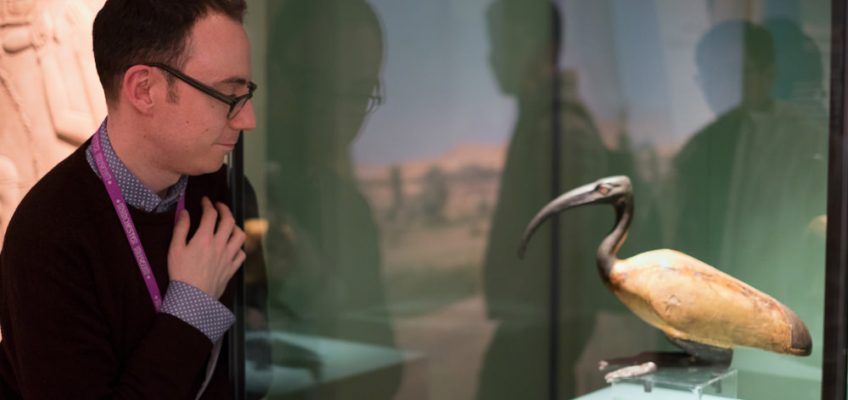 'Animal Mummies' at the Manchester Museum: a retrospective interview with Campbell Price