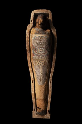 The coffin and wrapped mummy of an ancient Egyptian called Tasheriankh