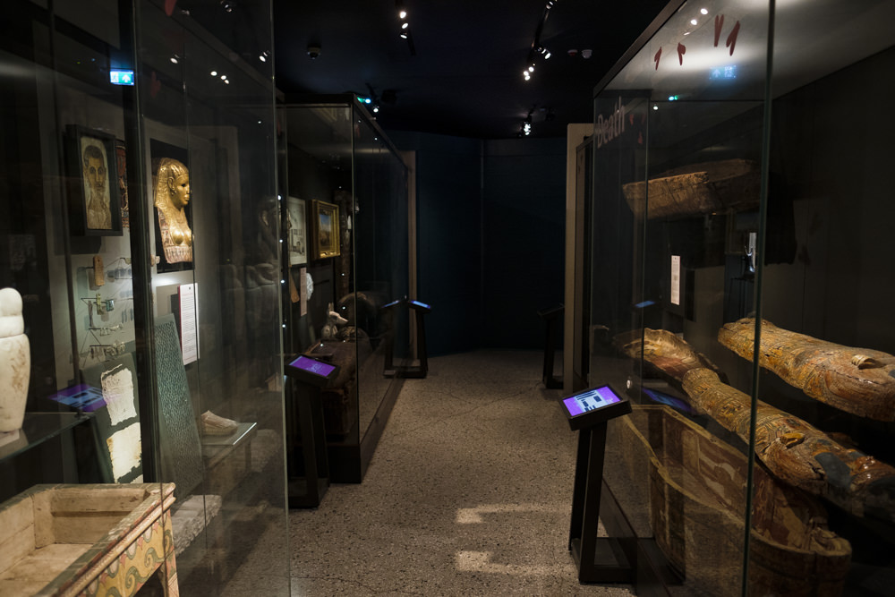 A museum gallery with ancient Egyptian artefacts on display