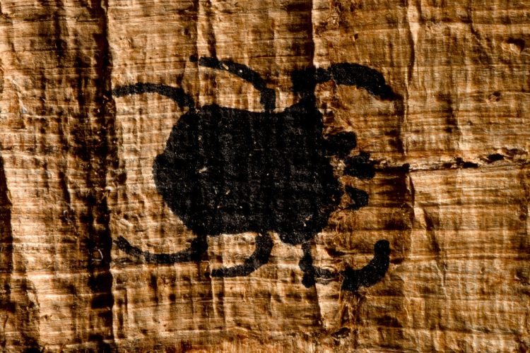 A tiny ancient Egyptian scarab beetle painted on papyrus