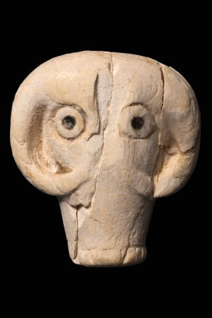 A small, carved ivory animal's head from Predynastic Egypt