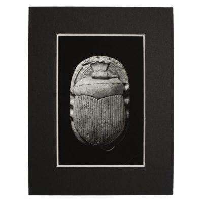 product image for the khepri scarab fridge magnet