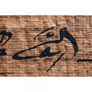product image for the name of thoth fine-art print