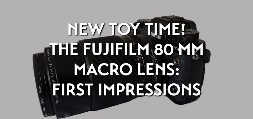New toy time! The Fujifilm 80mm macro lens: first impressions
