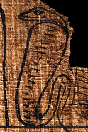 an ancient egyptian rearing cobra on papyrus