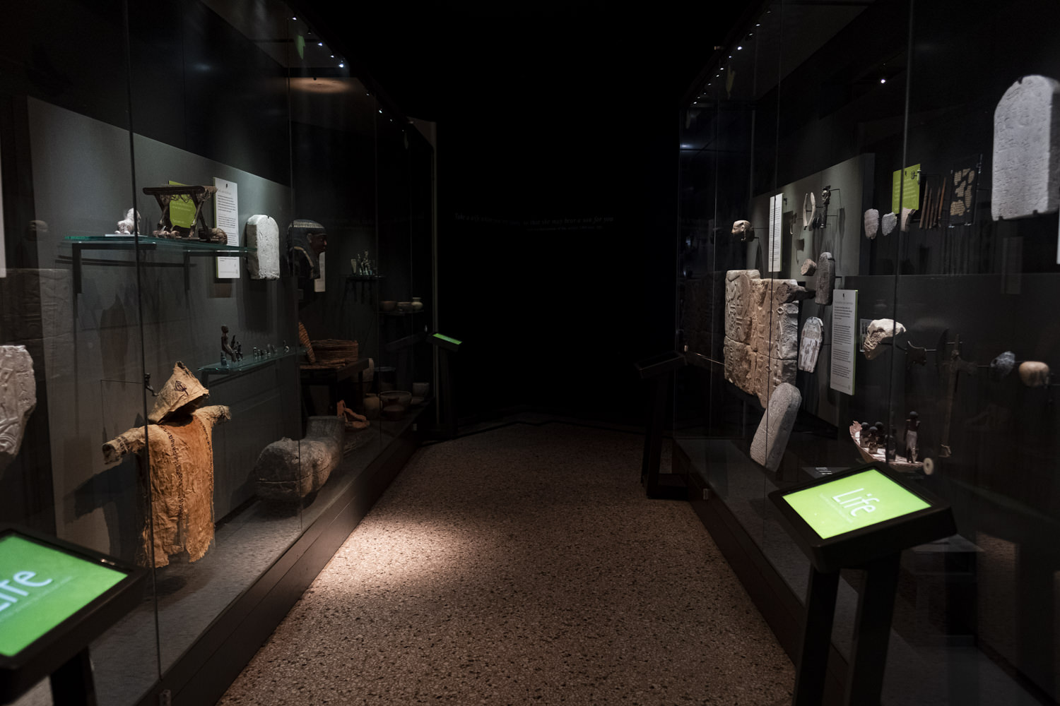 a museum gallery with low lighting