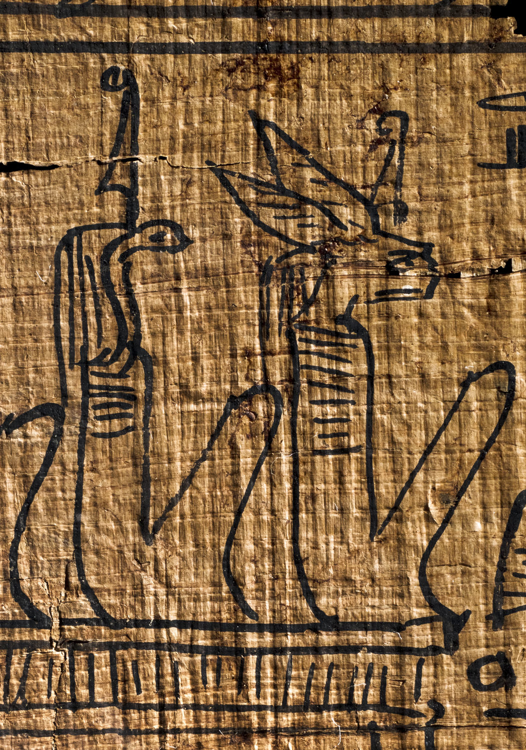 two animal-headed deities in the egyptian book of the dead