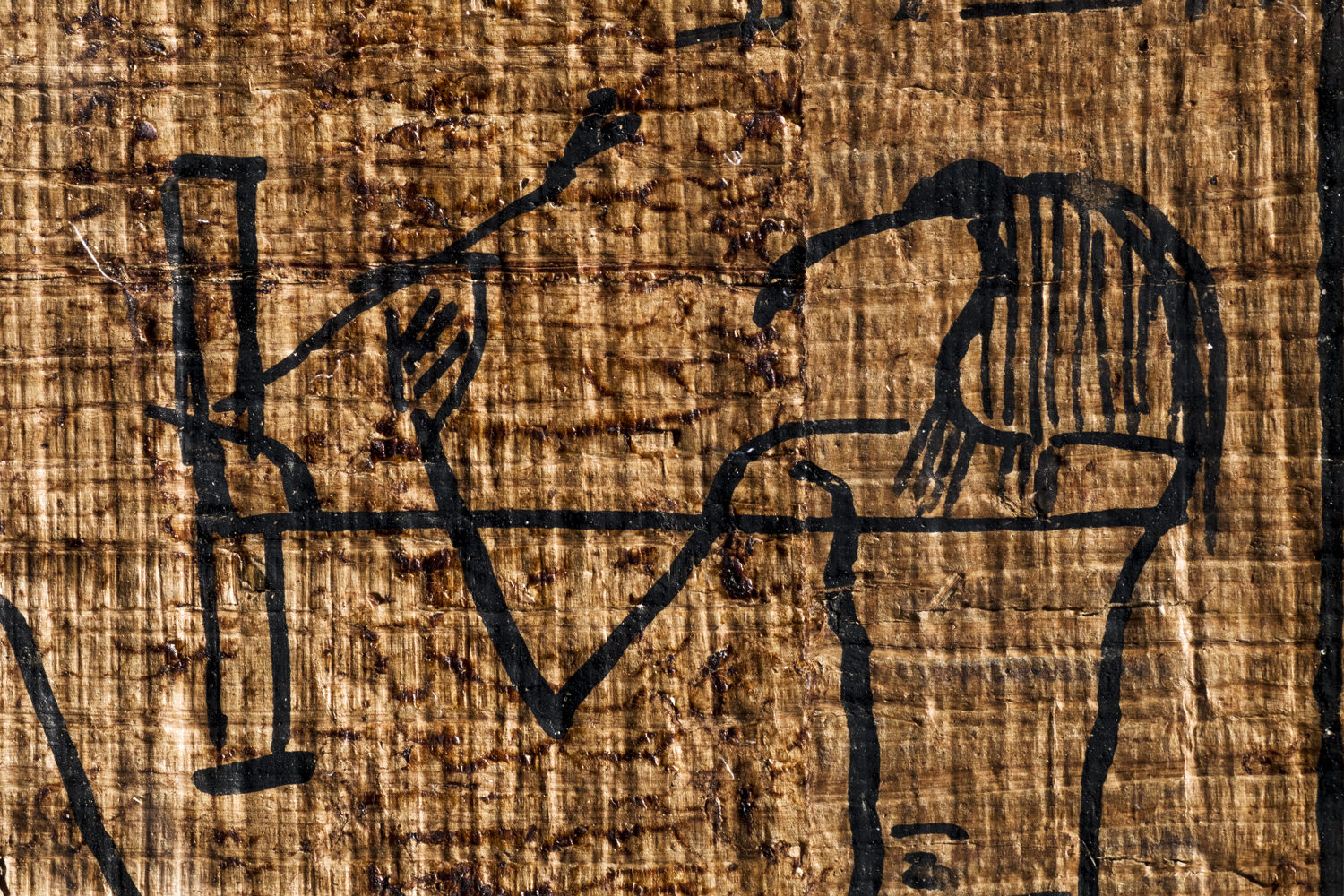 thoth on an egyptian book of the dead papyrus